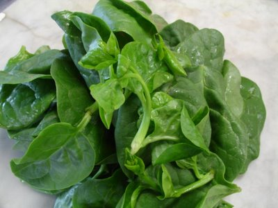indian-spinach-green