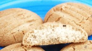 nonta-biscuit